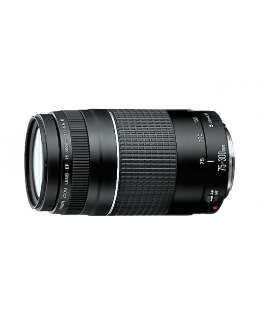 Canon Telephoto Zoom Lens Slr Cameras EF 75 To 300mm f 4 To 5.6 III Usm